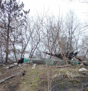 What's Left  of the Beaver House 2009