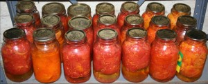 Twenty-one quarts of tomatoes from the 2010 canning season