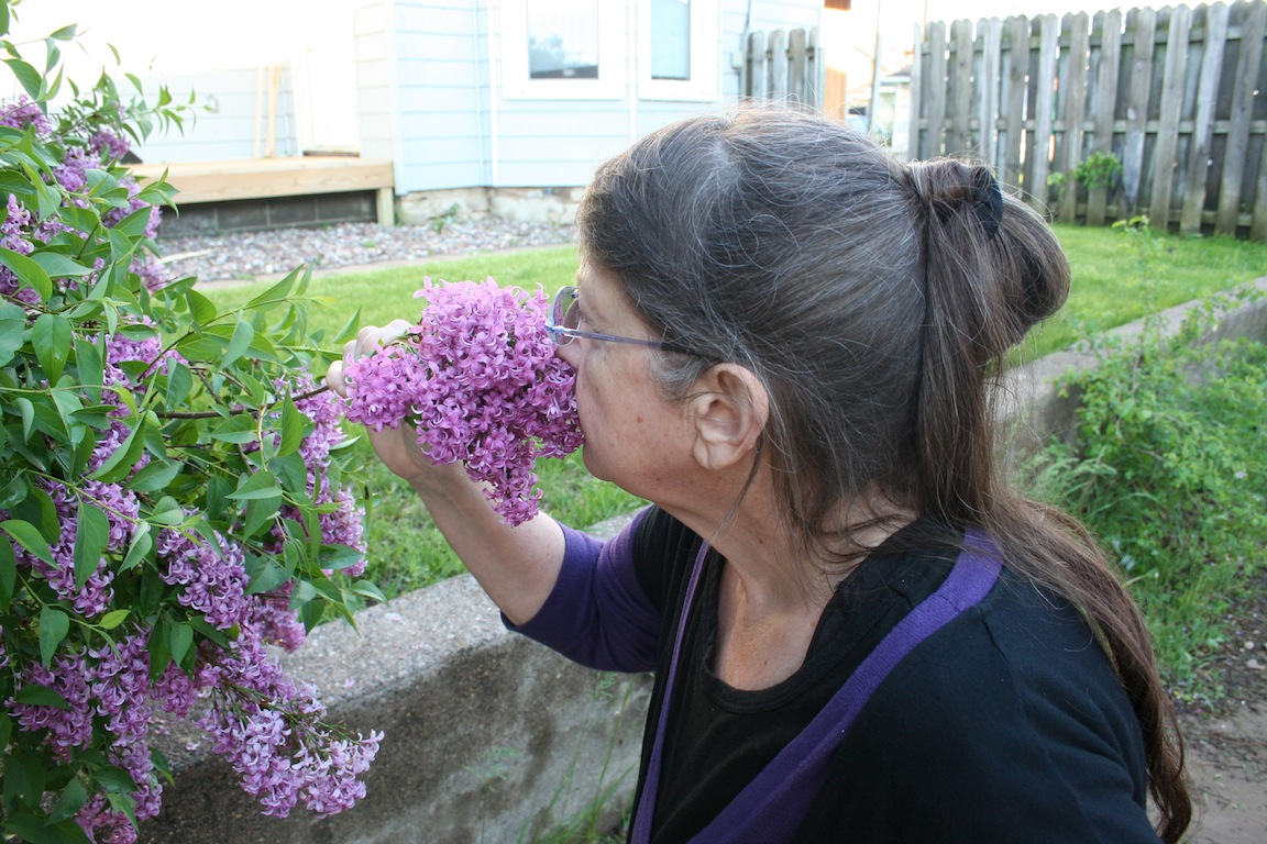 Smelling the Lilacs