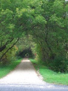 A typical bike-seat view of one of our local Wisconsin trails.