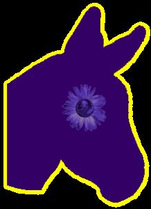 pe_dnc_logo_2